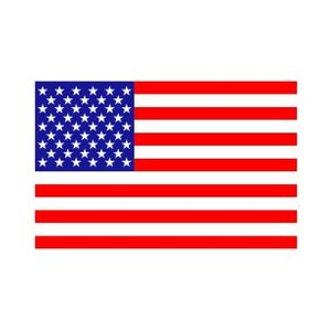 ACTION_US-Flag_4x6_decal