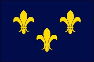 fleur-de-lis-blue-flag-01