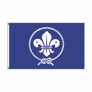 flag_boyscouts